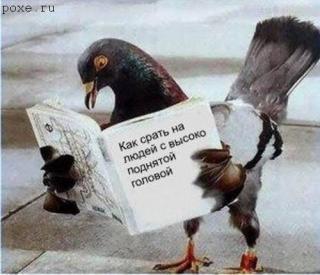 http://forumupload.ru/uploads/0002/74/04/63605-1.jpg