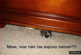 http://forumupload.ru/uploads/0002/b2/b4/6347-1.jpg