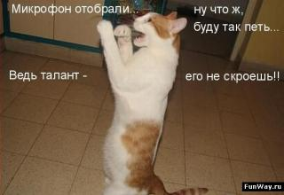 http://forumupload.ru/uploads/0002/b2/b4/6347-4.jpg