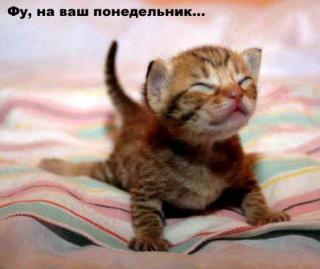 http://forumupload.ru/uploads/0002/b2/b4/6537-5.jpg