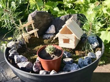 Растения и Грибы: всё необычное, полезное и красивое