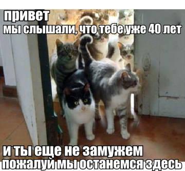 http://forumupload.ru/uploads/0006/60/18/5752/t612551.jpg