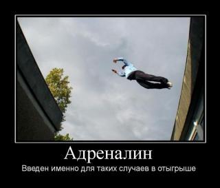 http://forumupload.ru/uploads/0006/f5/43/325034-3.jpg