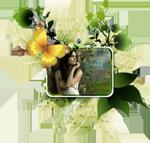 http://forumupload.ru/uploads/0007/e3/f7/25675-2.png