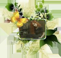 http://forumupload.ru/uploads/0007/e3/f7/25680-2.png