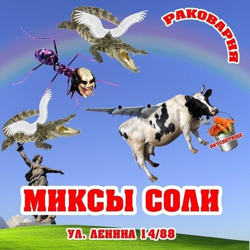 https://forumupload.ru/uploads/0007/e3/f7/7130/48518.jpg