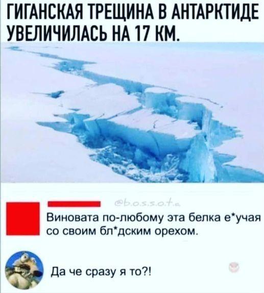 https://forumupload.ru/uploads/0008/7b/38/9062/t699459.jpg