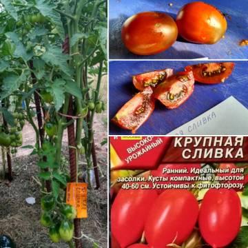 http://forumupload.ru/uploads/0008/a6/2e/2/t60179.jpg