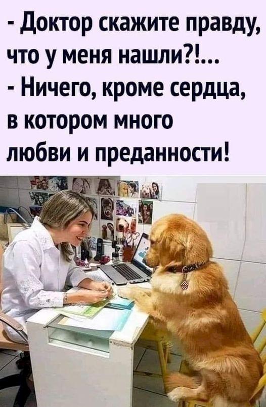 http://forumupload.ru/uploads/0009/61/87/1290/241412.jpg