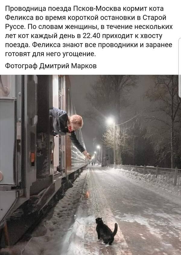 https://forumupload.ru/uploads/0009/61/87/1290/t182744.jpg