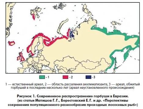 http://forumupload.ru/uploads/0009/61/87/14/t92911.jpg