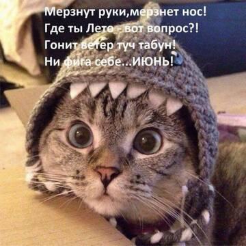 http://forumupload.ru/uploads/0009/61/87/604/t922097.jpg