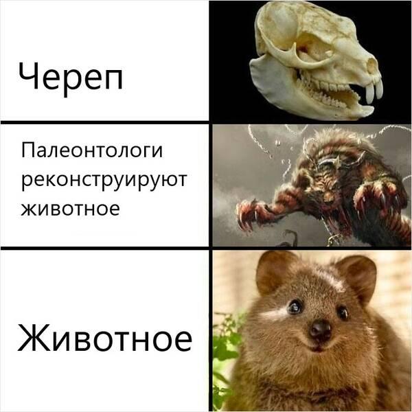 http://forumupload.ru/uploads/000a/3f/42/33/t180980.jpg