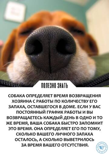 https://forumupload.ru/uploads/000a/3f/42/512/t766422.jpg