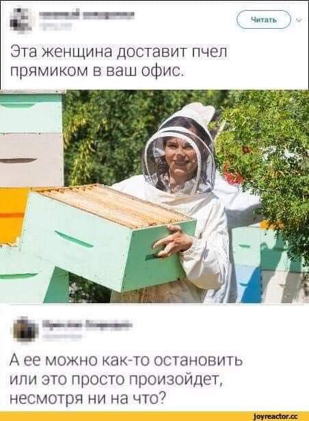 https://forumupload.ru/uploads/000a/3f/42/819/t610687.jpg