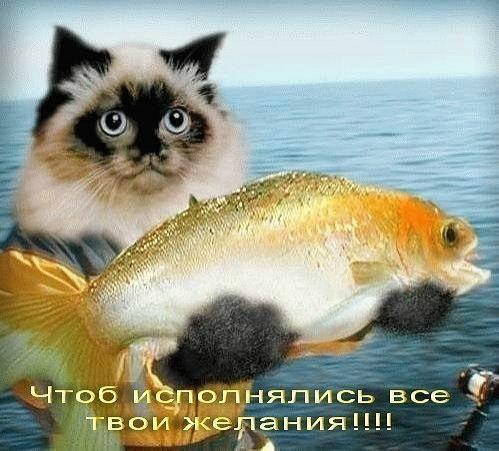 http://forumupload.ru/uploads/000a/78/7a/526/884289.jpg