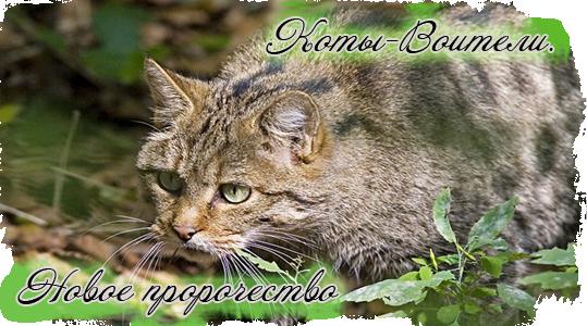 http://forumupload.ru/uploads/000a/7e/64/1480-1-f.png