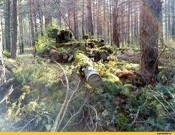 http://forumupload.ru/uploads/000a/e3/16/1134/t27603.jpg