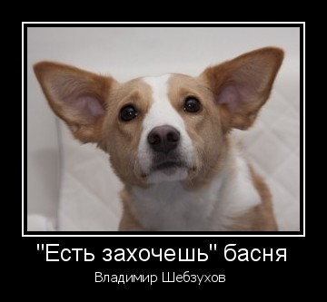 https://forumupload.ru/uploads/000b/6b/e9/13/t58403.jpg
