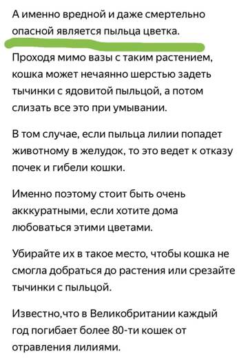 https://forumupload.ru/uploads/000b/c9/04/373/t175505.jpg