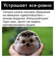 https://forumupload.ru/uploads/000c/7b/d5/1462/t387660.jpg