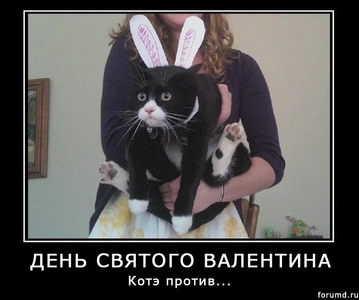 http://forumupload.ru/uploads/000d/25/1f/9-1-f.jpg