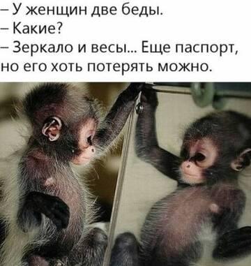 http://forumupload.ru/uploads/000d/6b/61/4550/t408658.jpg