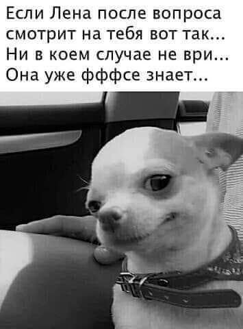 http://forumupload.ru/uploads/000d/6b/61/4550/t518010.jpg