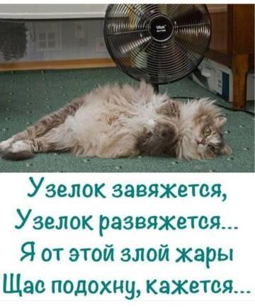 http://forumupload.ru/uploads/000d/6b/61/4550/t834818.jpg