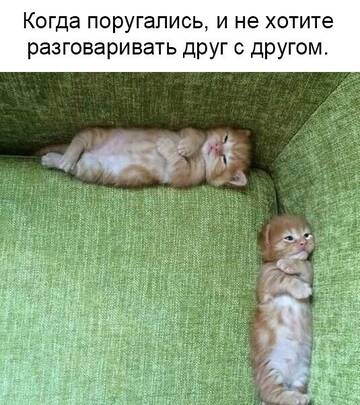 http://forumupload.ru/uploads/000d/6b/61/4550/t984382.jpg