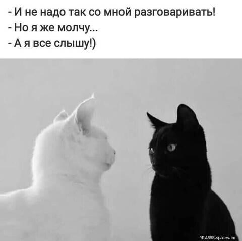 http://forumupload.ru/uploads/000d/6b/61/4555/t10733.jpg