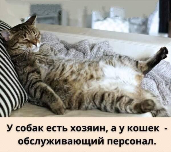 http://forumupload.ru/uploads/000d/6b/61/4555/t564485.jpg