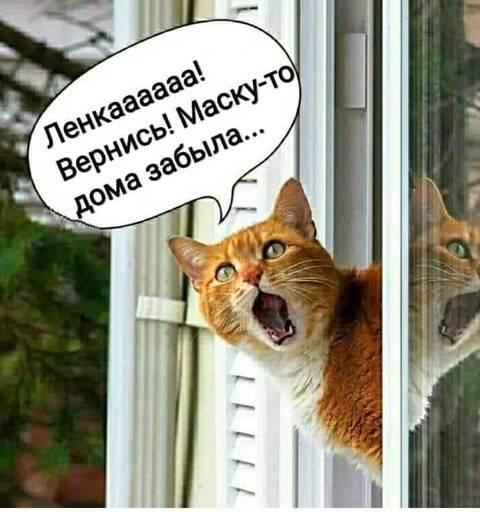 http://forumupload.ru/uploads/000d/6b/61/4555/t727443.jpg