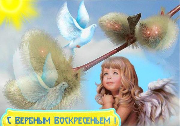 http://forumupload.ru/uploads/000d/6b/61/4555/t84997.png