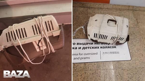 http://forumupload.ru/uploads/000d/aa/a3/2/t47588.jpg
