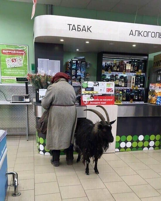 http://forumupload.ru/uploads/000d/aa/a3/2/t55676.jpg