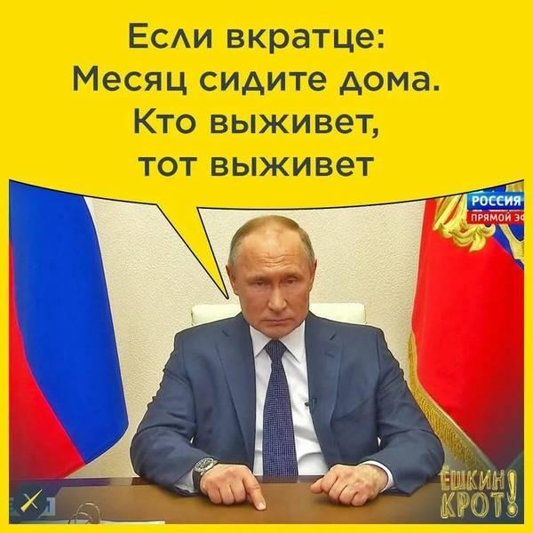 http://forumupload.ru/uploads/000d/aa/a3/2/t58062.jpg