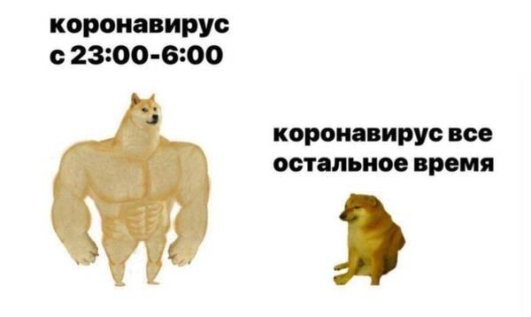 http://forumupload.ru/uploads/000d/aa/a3/2/t585954.jpg