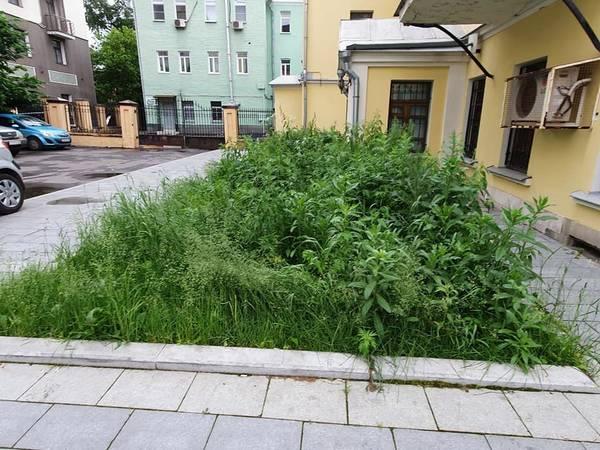 http://forumupload.ru/uploads/000d/aa/a3/2/t61280.jpg