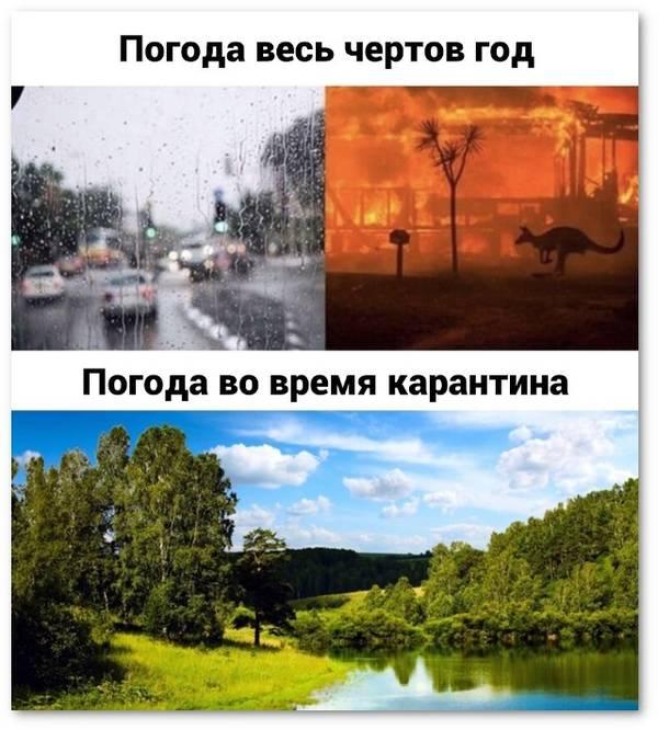 http://forumupload.ru/uploads/000d/aa/a3/2/t790021.jpg
