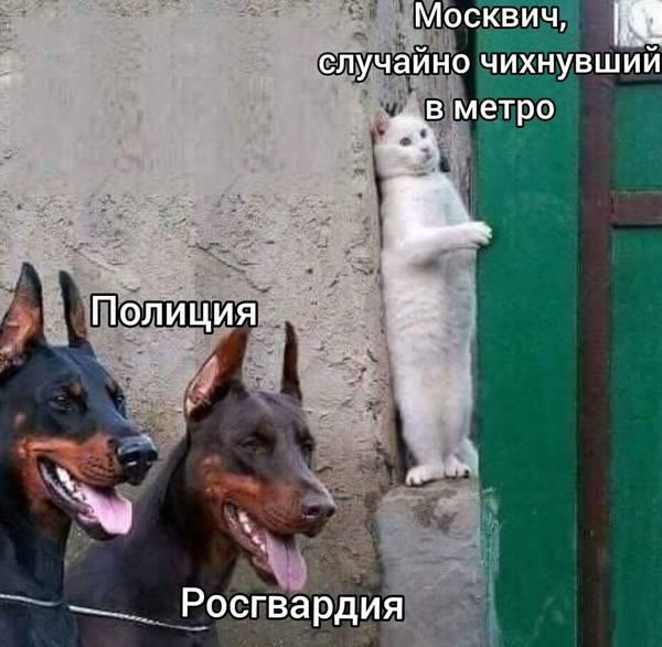 http://forumupload.ru/uploads/000d/aa/a3/2/t911503.jpg