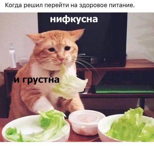 http://forumupload.ru/uploads/000d/aa/a3/2/t97604.jpg