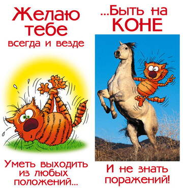 http://forumupload.ru/uploads/000e/15/b8/2002/t634925.jpg