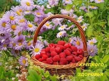 http://forumupload.ru/uploads/000e/ad/4d/11355/t252402.jpg