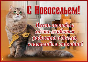 https://forumupload.ru/uploads/000e/ad/4d/32443/t160297.jpg