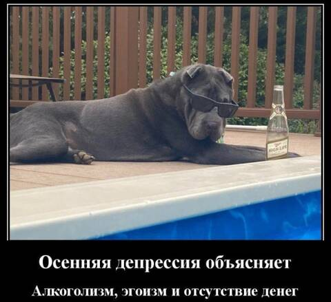 https://forumupload.ru/uploads/000f/a0/99/86/t556240.jpg
