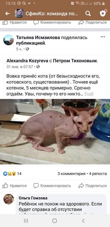 http://forumupload.ru/uploads/000f/f6/ce/6/t20980.jpg