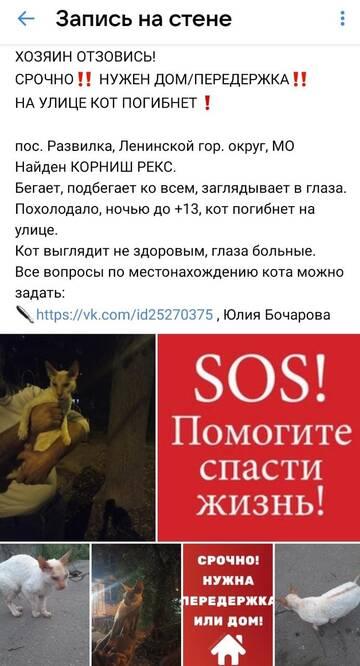 https://forumupload.ru/uploads/000f/f6/ce/6/t258469.jpg