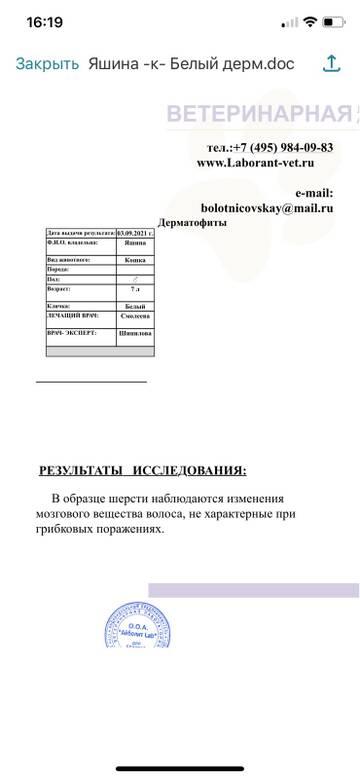 https://forumupload.ru/uploads/000f/f6/ce/6/t926866.jpg