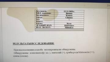 https://forumupload.ru/uploads/000f/f6/ce/6/t94758.jpg